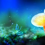 Oregonians Are One Step Closer to Voting on Magic Mushroom Legalization