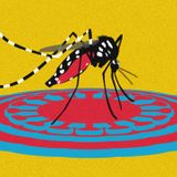 Why coronavirus won't be the end of it