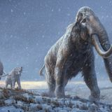 Scientists extract from Siberian mammoth molars the oldest DNA ever recovered