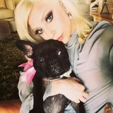 Lady Gaga's dogs stolen after her dogwalker is shot four times in chest, report says