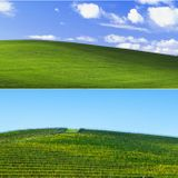 I found the Bay Area hill in one of history's most viewed photos