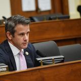 Allies of Rep. Adam Kinzinger launch super PAC to support Republicans who have bucked Trump