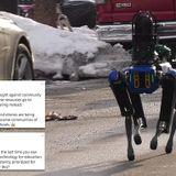 AOC slams NYPD's $75,000 robotic police dog named Digidog as racist