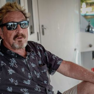 John McAfee charged with securities fraud for 'pump and dump' cryptocurrency scheme