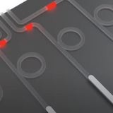 Programmable optical quantum computer arrives late, steals the show