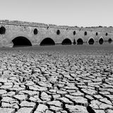 European summer droughts since 2015 unprecedented in past two millennia