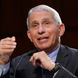 'I totally disagree with you,' Fauci tells GOP senator in fiery exchange over masks