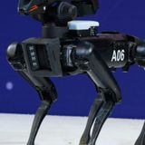New York lawmaker wants to ban police use of armed robots