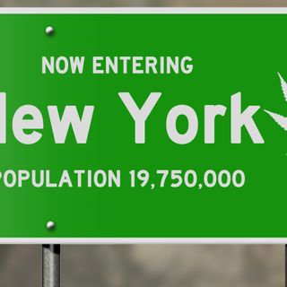 New York likely to become 16th state to legalize recreational marijuana