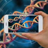 Pocket-sized device tests DNA in blood samples for genetic conditions
