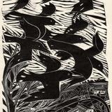 [Miscellany] The Crow Whisperer, By Lauren Markham | Harper's Magazine