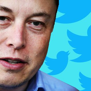 What It's Like When Elon Musk's Twitter Mob Comes After You