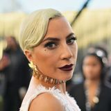 Lady Gaga's Dog Walker Had Part of His Lung Removed