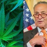 Schumer Weighs In On New York Legal Marijuana Talks, Applauding Legislature And Snubbing Cuomo