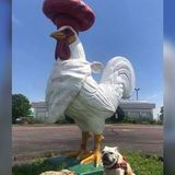 Wisconsin restaurant offers $1K reward to get its giant rooster back
