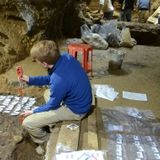 2 recent studies sequence DNA from the earliest Homo sapiens in Eurasia