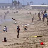 Georgia Reopens While Thousands of Californians Pack the Beaches amid Coronavirus Pandemic