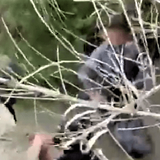 WATCH: Border Patrol Marine Agents Rescue Two Small Children on Banks of Rio Grande