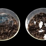A new technique could make some plastic trash compostable at home