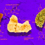 Arbitrary THC Limits Could Wipe Out Much of the Cannabis Industry