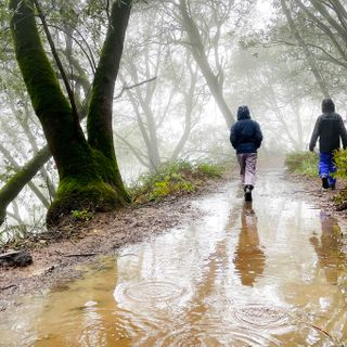 Rain is on the way to SF Bay Area, but will it help?