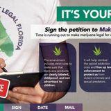 Florida marijuana legalization dealt blow by Florida Supreme Court