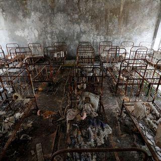 Abandoned plant and wasteland: Ukraine eyes UNESCO World Heritage tag for Chernobyl