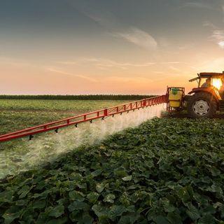 Pesticides Are Killing the World's Soils