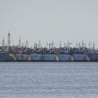 'Dark' ships off Argentina ring alarms over possible illegal fishing