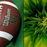 NFL Funds Marijuana Research As Federal Prohibition 'Adversely' Impacts Studies Into Opioid Alternative For Players