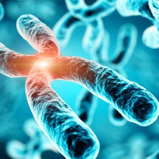 Molecules identified that reverse cellular aging process