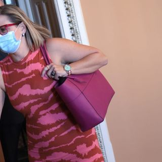 Sinema Slams 'Wholly Inappropriate' Protesters Who Confronted Her in Bathroom