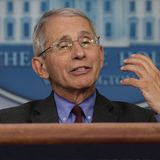 Anthony Fauci: Sports might not happen this year