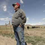 A conservation success story: Protecting Utah farmland, wildlife and Camp Williams