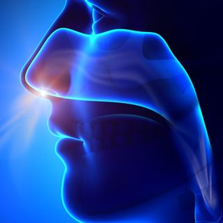 """""""Sniff test"""" for consciousness may aid in treatment of brain injuries"""