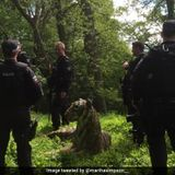 Helicopter, Armed Police Called To Capture Tiger. It Turned Out To Be...
