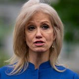 Kellyanne Conway Rails Against Husband's Anti-Trump Group On Fox News