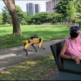 Robot reminds visitors of safe distancing measures in Bishan-Ang Mo Kio Park