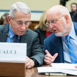 Fauci, other top health officials to testify before Senate via videoconference