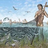 In Ancient Florida, the Calusa Built an Empire Out of Shells and Fish