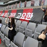 Football club apologises for 'sex dolls' in stands