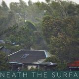 Sundarbans shields southwestern Bangladesh, again