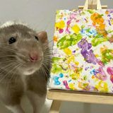 Meet The Rat Whose Paintings Have Earned Over 1,000 Pounds