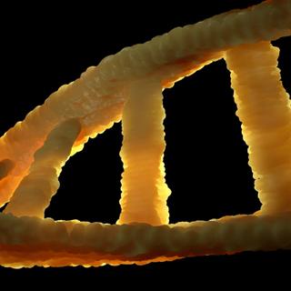 Scientists genetically edit the innate immune cells using CRISPR-Cas9 - Mondestuff