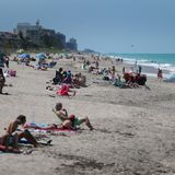 Why Did Florida Avoid a Coronavirus Disaster?