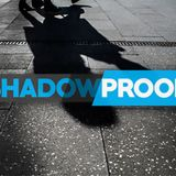 All The Beating Drums, The Celebration Guns - Shadowproof