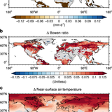 The intensification of Arctic warming as a result of CO2 physiological forcing