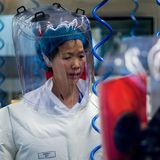China's 'bat woman' researcher warns coronavirus is just 'tip of iceberg'
