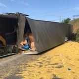 Overturned semi-truck spills 43K pounds of dry pasta on I-24 near I-40 interchange in Nashville