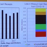 Economist estimates Missouri's agriculture industry is taking an $850 million hit from COVID-19